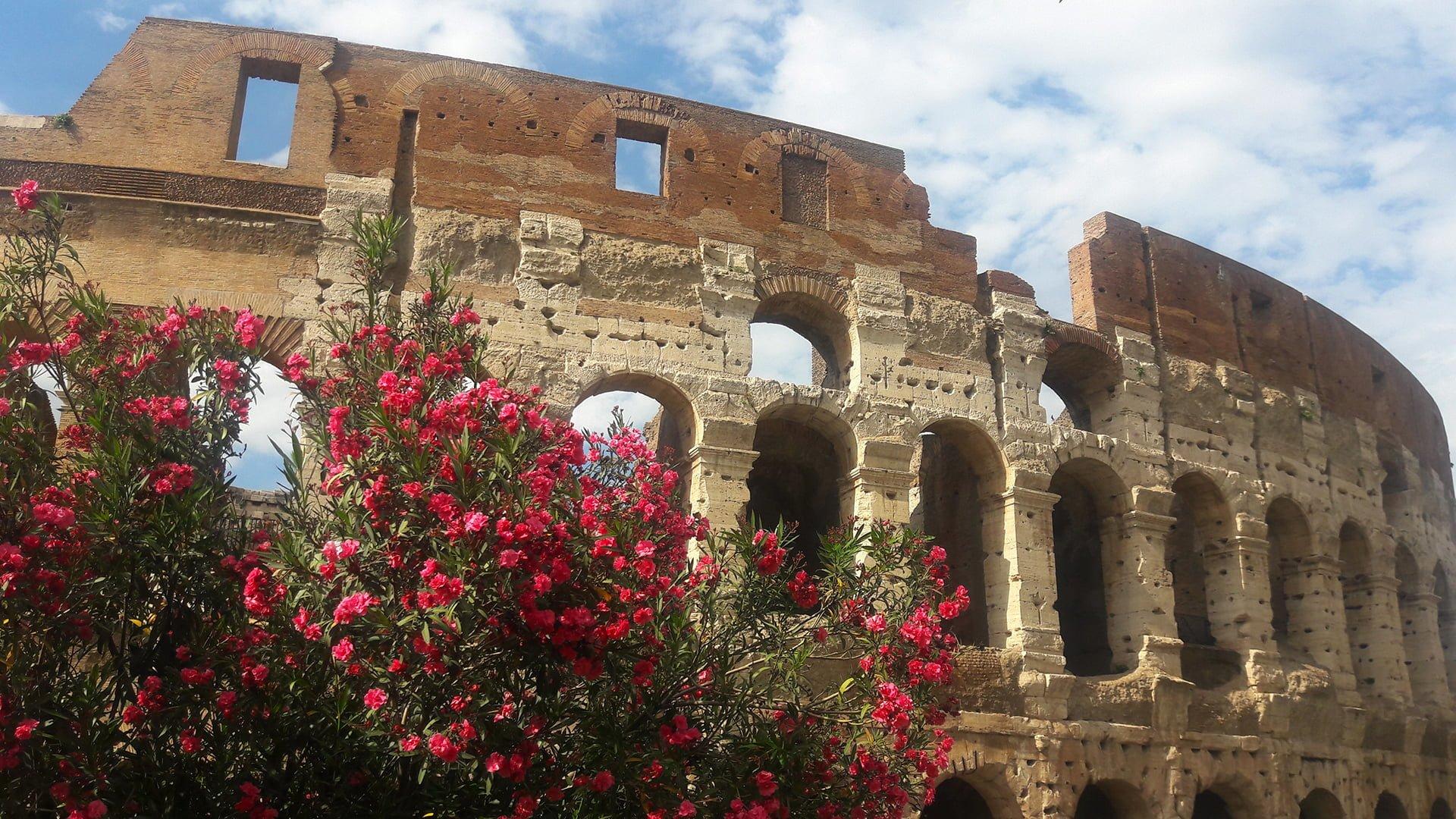 Colosseum, Forum and Palatine tour